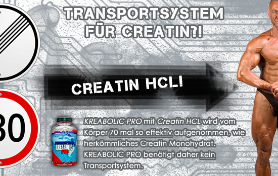 Ist ein Transportsystem bei der Creatin Einnahme wichtig